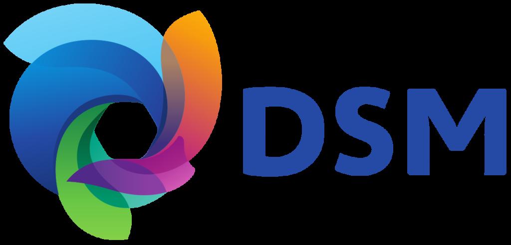 3D Printer - DSM